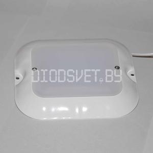 Светодиодный светильник 6Вт с матовым стеклом, медуза-6